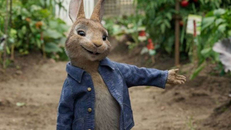 Peter Rabbit recensione zerkalo spettacolo