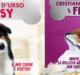d'urso malgioglio tv cinema grande fratello show dogs zerkalo spettacolo