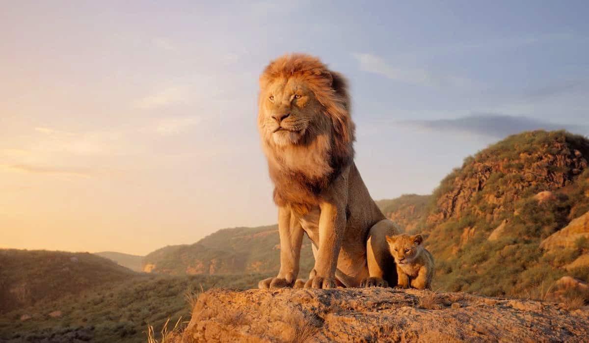 il re leone recensione zerkalo spettacolo