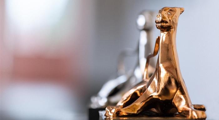 The Films After Tomorrow, il primo progetto di Locarno 2020 premia il futuro zerkalo spettacolo