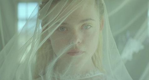 Young Ones, il film post-apocalittico con Michael Shannon e Elle Fanning sulle maggiori piattaforme digitali zerkalo spettacolo