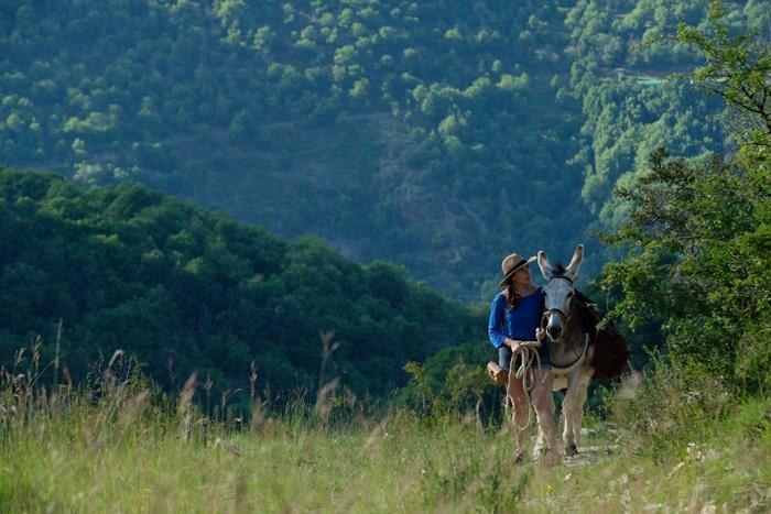 Io lui lei e l'asino: la recensione del film francese campione d'incassi premiato ai César zerkalo spettacolo